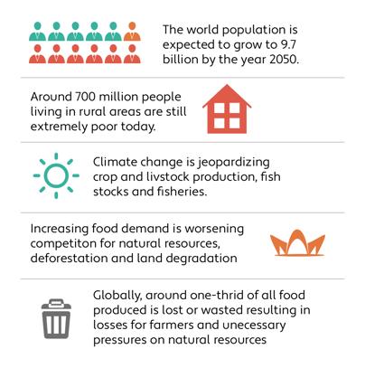 Farming Challenges