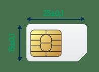 Standard (Mini) SIM 2FF